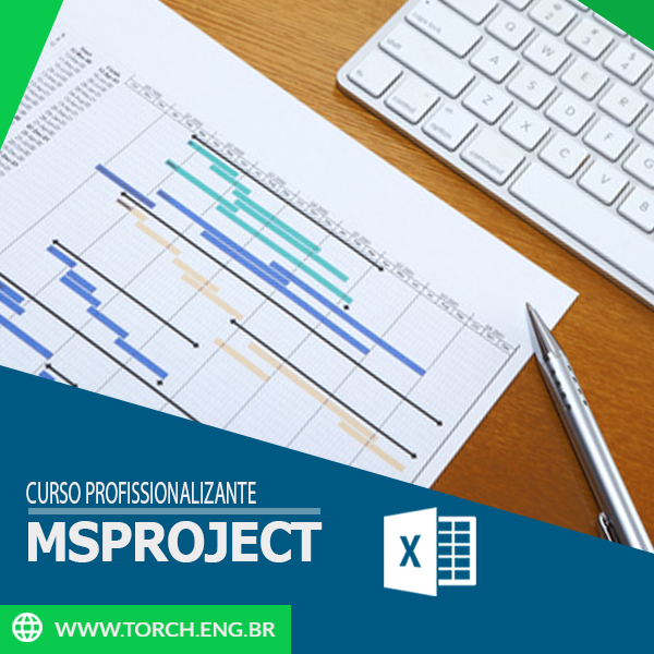 MSProject (2013)